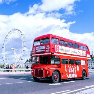 Afternoon Tea Bus Tour 4