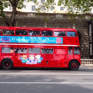 Peppa pig party bus12